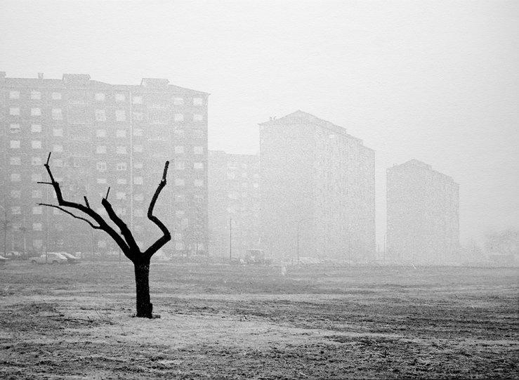 Итальянский фотограф Аугусто Кантамесса - №5