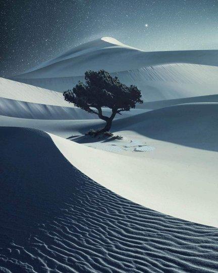 Победитель в категории «Пейзаж». Автор фото: Бенджамин Эверетт (остров Лопес, США).