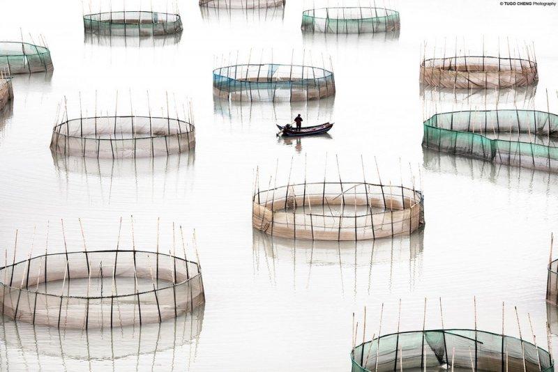 Фотограф Туго Ченг - №1