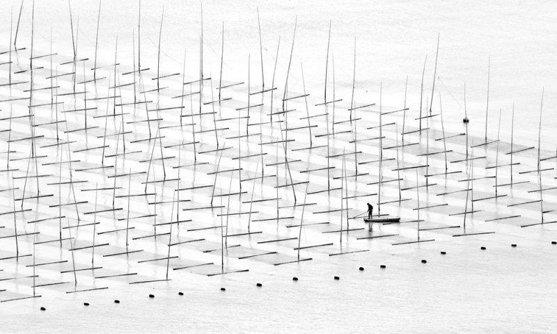 Фотограф Туго Ченг - №4