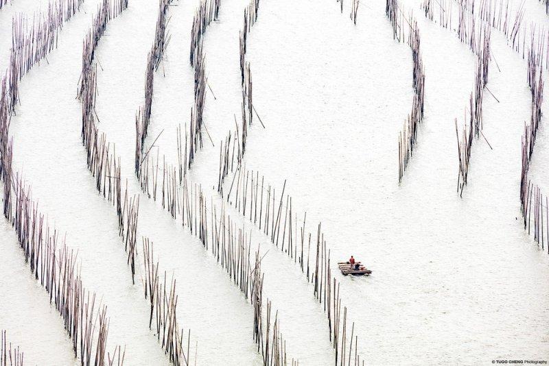 Фотограф Туго Ченг - №8
