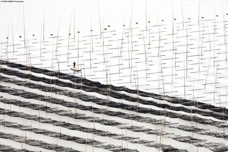 Фотограф Туго Ченг - №12