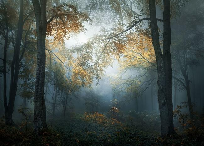 «Ранняя осень на Балканах». Веселин Атанасов, Болгария