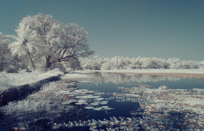Фотограф Нимит Нигам - №10