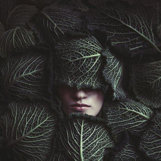 """""""Оттенки зелёного"""" - №14"""