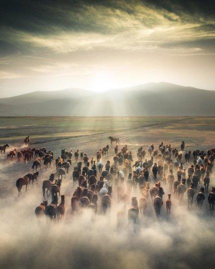 Фотограф Кума Чевик - №19