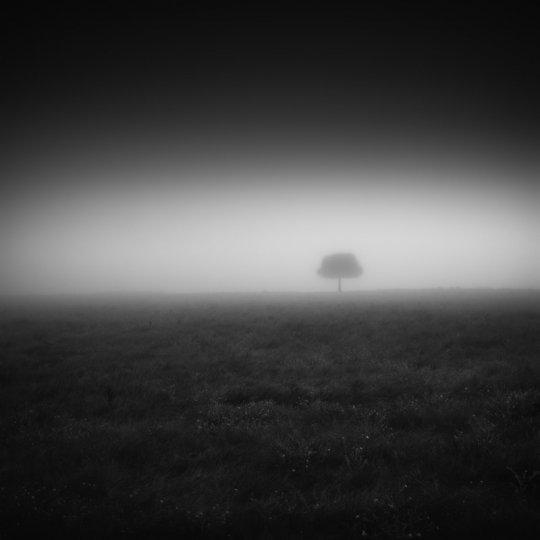 Фотограф Стив Ландерос - №10