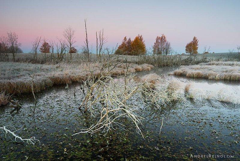 Фотограф Andrei Reinol - №2