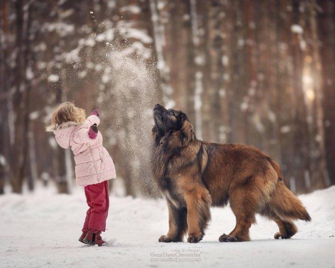 Фотограф Андрей Селиверстов - №10