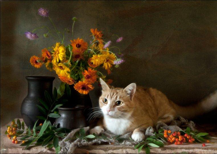 Фотограф Элеонора Григорьева - №2