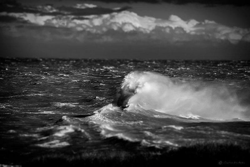 Фотограф Dalton Portella - №4