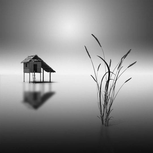 Фотограф Vassilis Tangoulis - №3