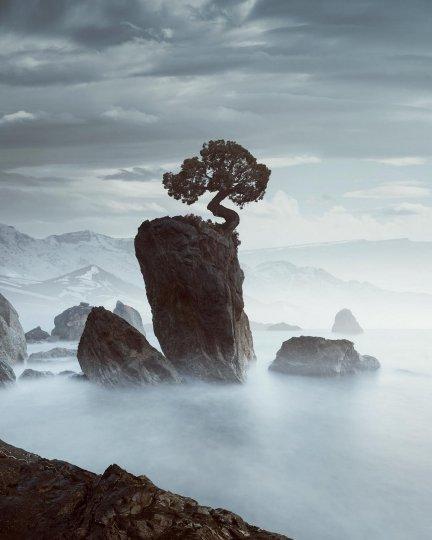 Фотограф Бенджамин Эверетт - №12