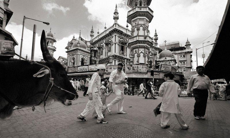 Индия в объективе легендарного Рагху Рая - №13
