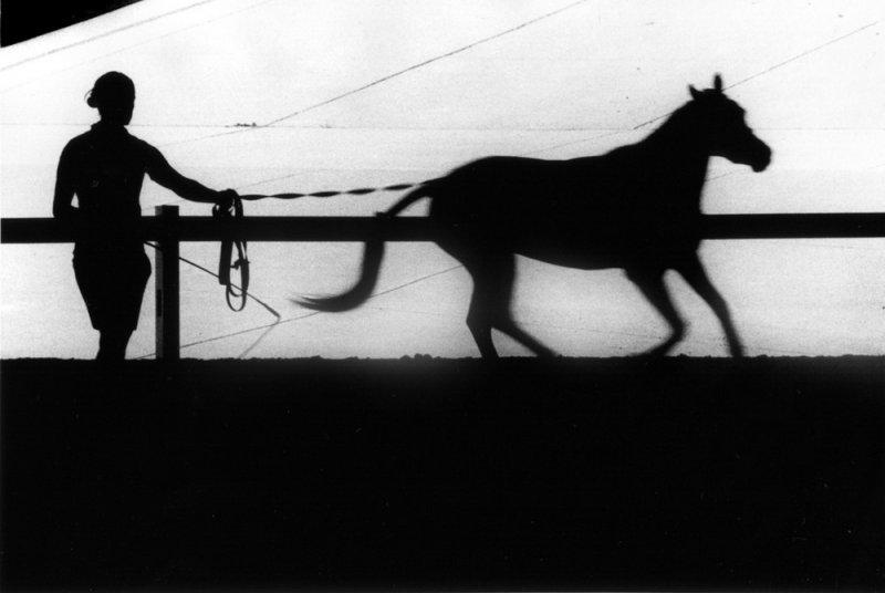 Фотограф Ренато Д'Агостин - №7