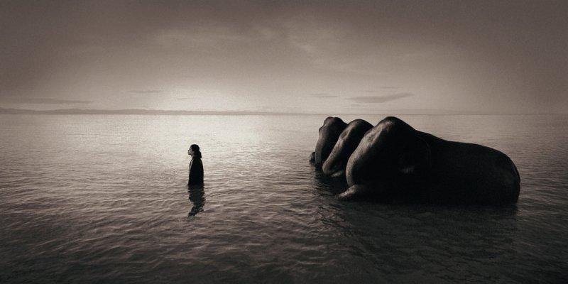Фотограф Грегори Кольбер - №3