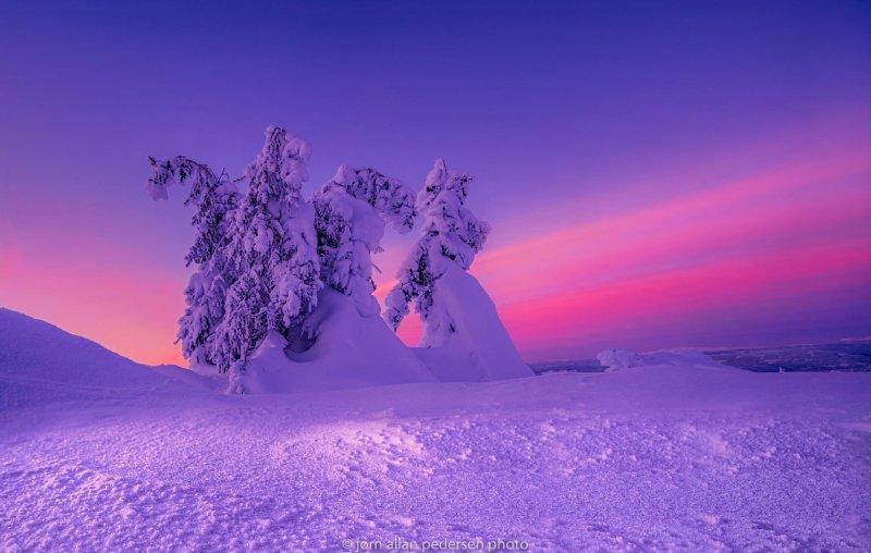 Фотограф Jоrn Allan Pedersen - №3