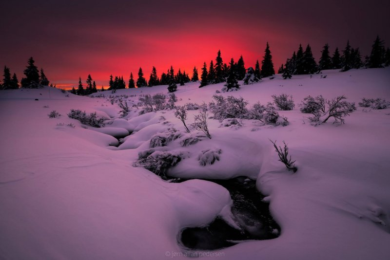 Фотограф Jоrn Allan Pedersen - №7