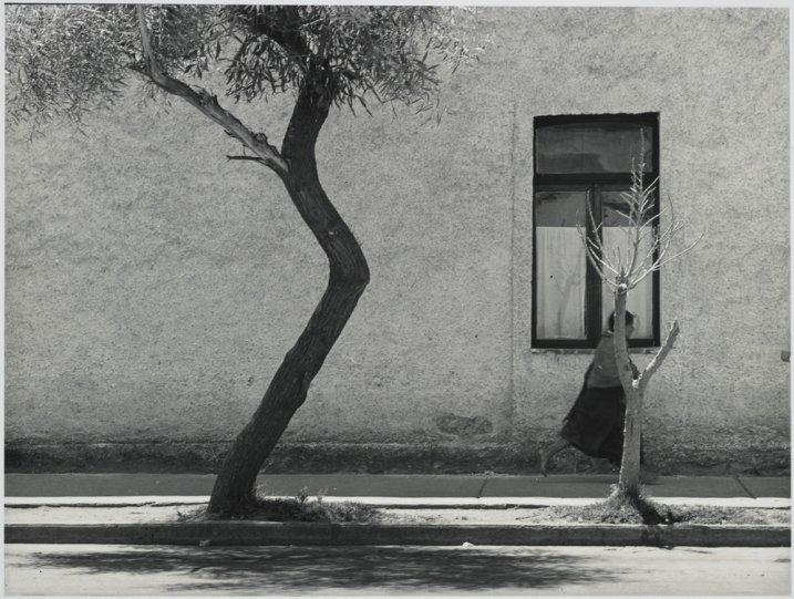 Мексика в фотографиях Мануэля Альвареса Браво - №27