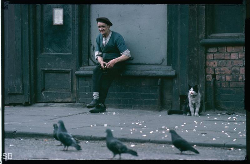 Фотографии Ширли Бейкер 1960-х годов - №25