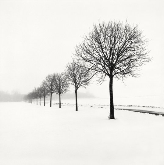 Шведский фотограф Хокан Странд - №11