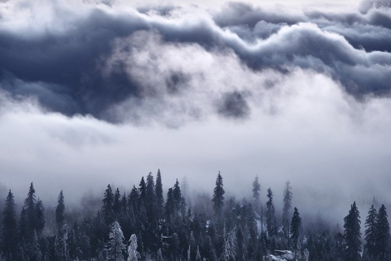 Килиан Шоенбергер «Зимняя сказка» - №19