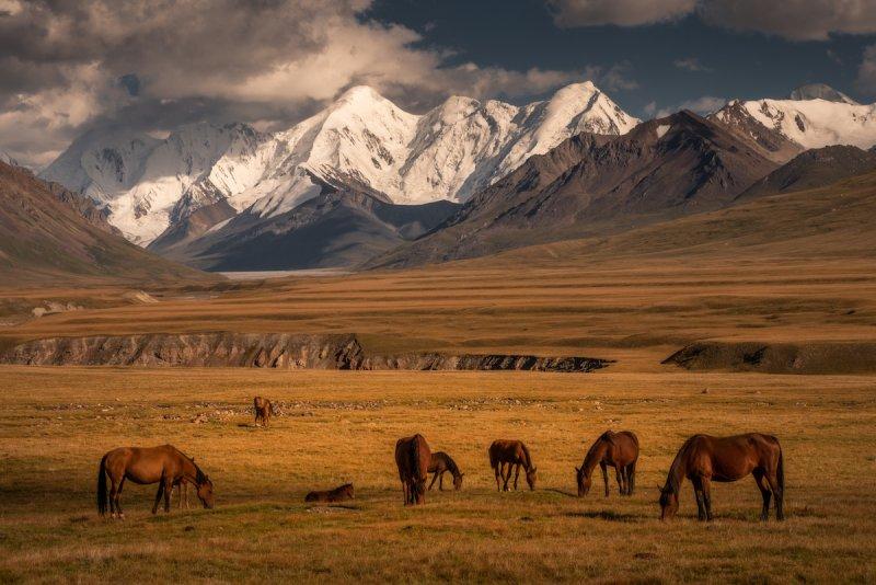 Потрясающие пейзажи Киргизии - №5
