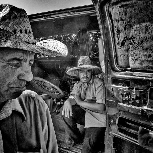 Америка в фотографиях Мэтта Блэка - №32
