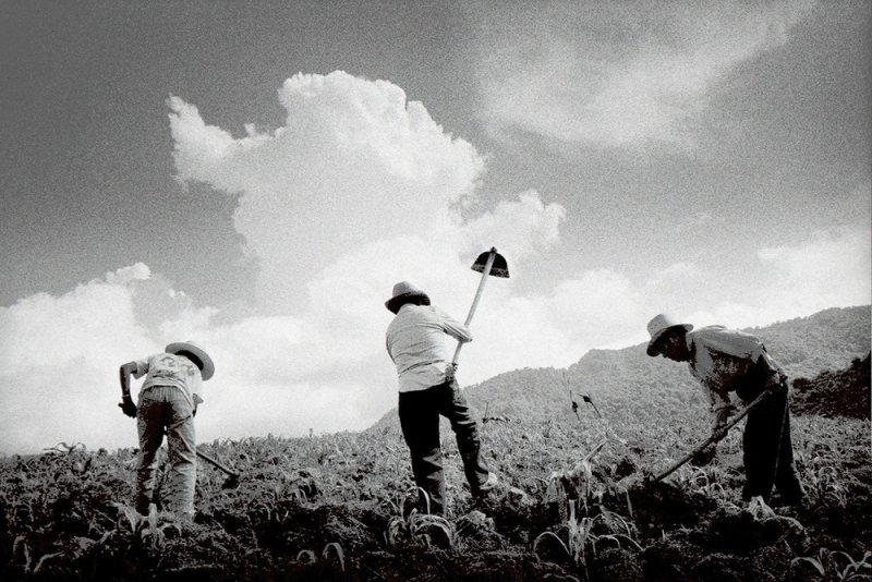 Америка в фотографиях Мэтта Блэка - №16