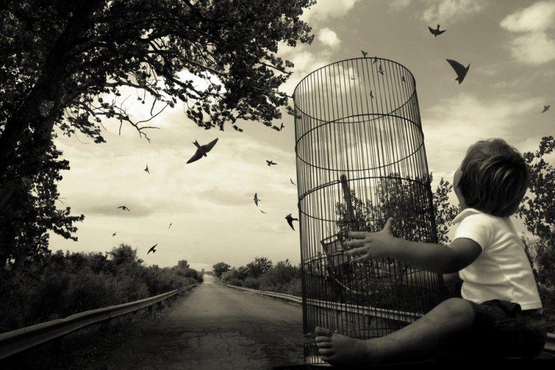 «Блуждающие сны». Фотограф Анджела Бэкон-Кидвелл - №10