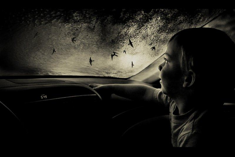 «Блуждающие сны». Фотограф Анджела Бэкон-Кидвелл - №14