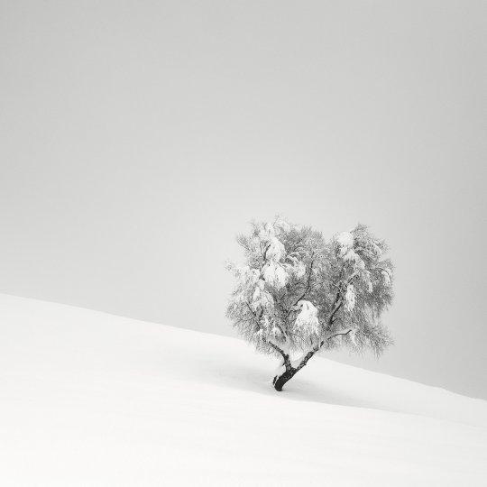 Пейзажные фотографии Пьера Пеллегрини - №3