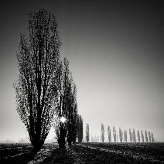 Пейзажные фотографии Пьера Пеллегрини - №13