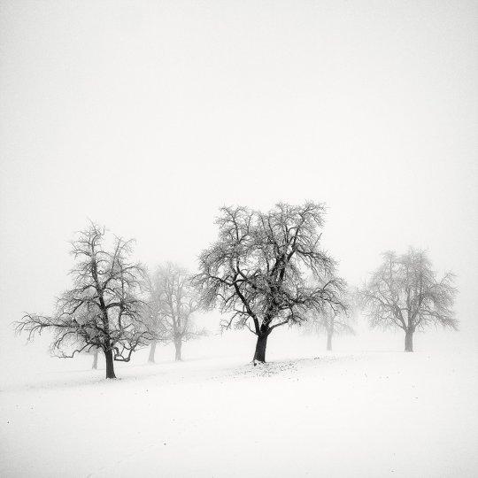 Пейзажные фотографии Пьера Пеллегрини - №15