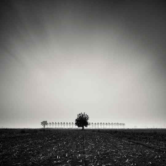Пейзажные фотографии Пьера Пеллегрини - №17