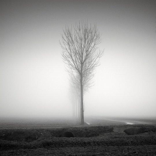 Пейзажные фотографии Пьера Пеллегрини - №21