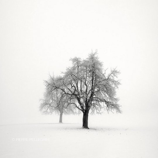 Пейзажные фотографии Пьера Пеллегрини - №23