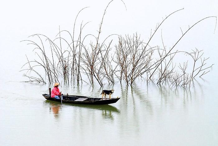 Вдохновляющие работы фотографа Ли Хоанг Лонга - №15
