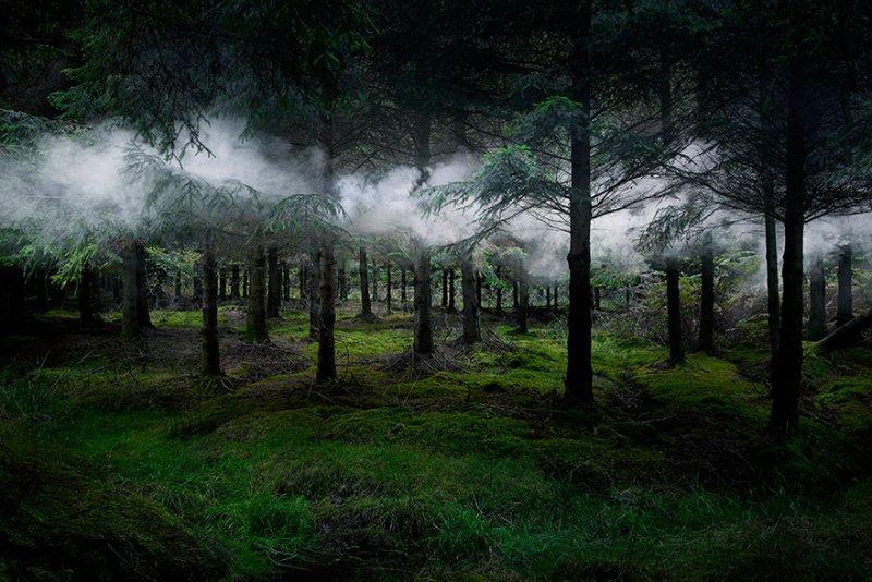 Пейзажи Великобритании от Элли Дэвис - №10