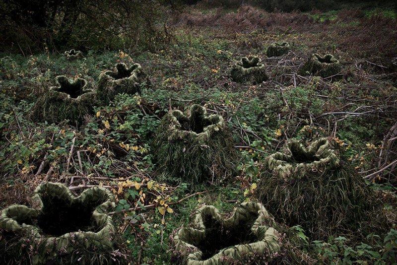 Пейзажи Великобритании от Элли Дэвис - №16