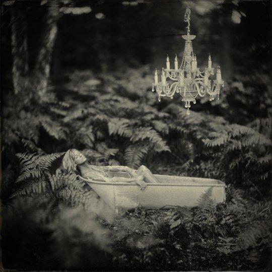 Фотографии Алекса Тиммерманса - №2