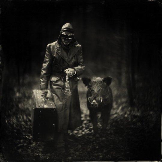 Фотографии Алекса Тиммерманса - №5