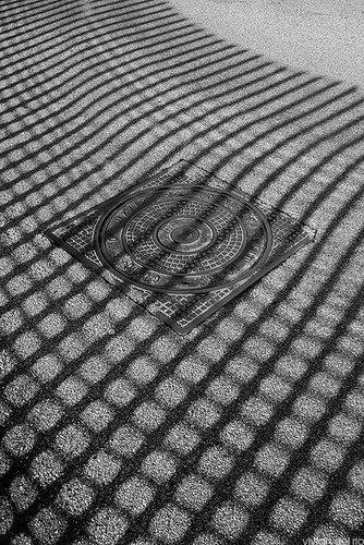 Фотограф Вивиан дель Ри - №23