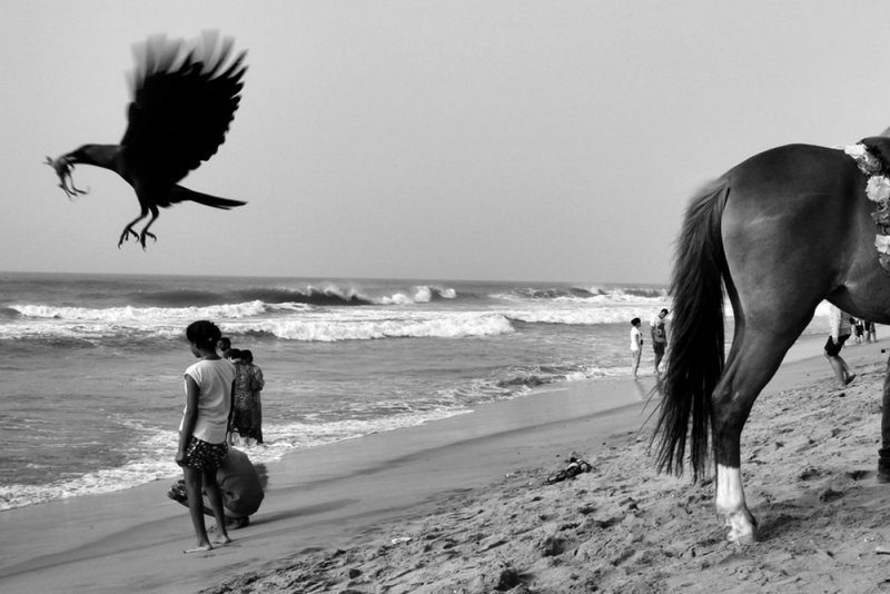 Фотограф Raj Sarkar - №5