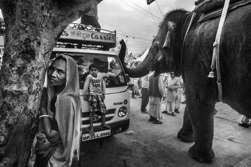 Фотограф Raj Sarkar - №7