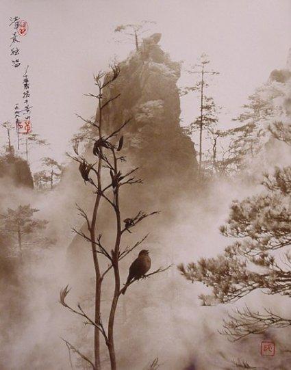 Фотограф Don Hong-Oai - №17