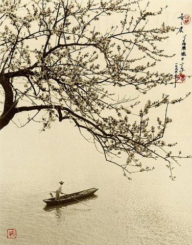 Фотограф Don Hong-Oai - №22