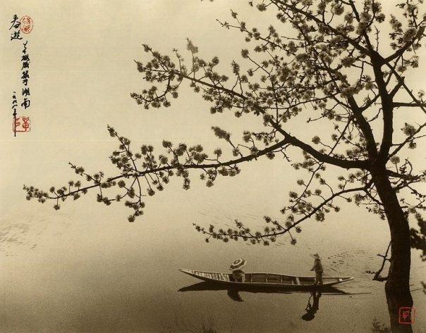 Фотограф Don Hong-Oai - №7