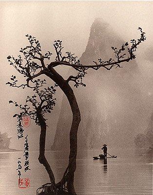 Фотограф Don Hong-Oai - №24