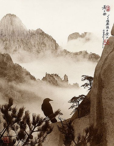 Фотограф Don Hong-Oai - №28